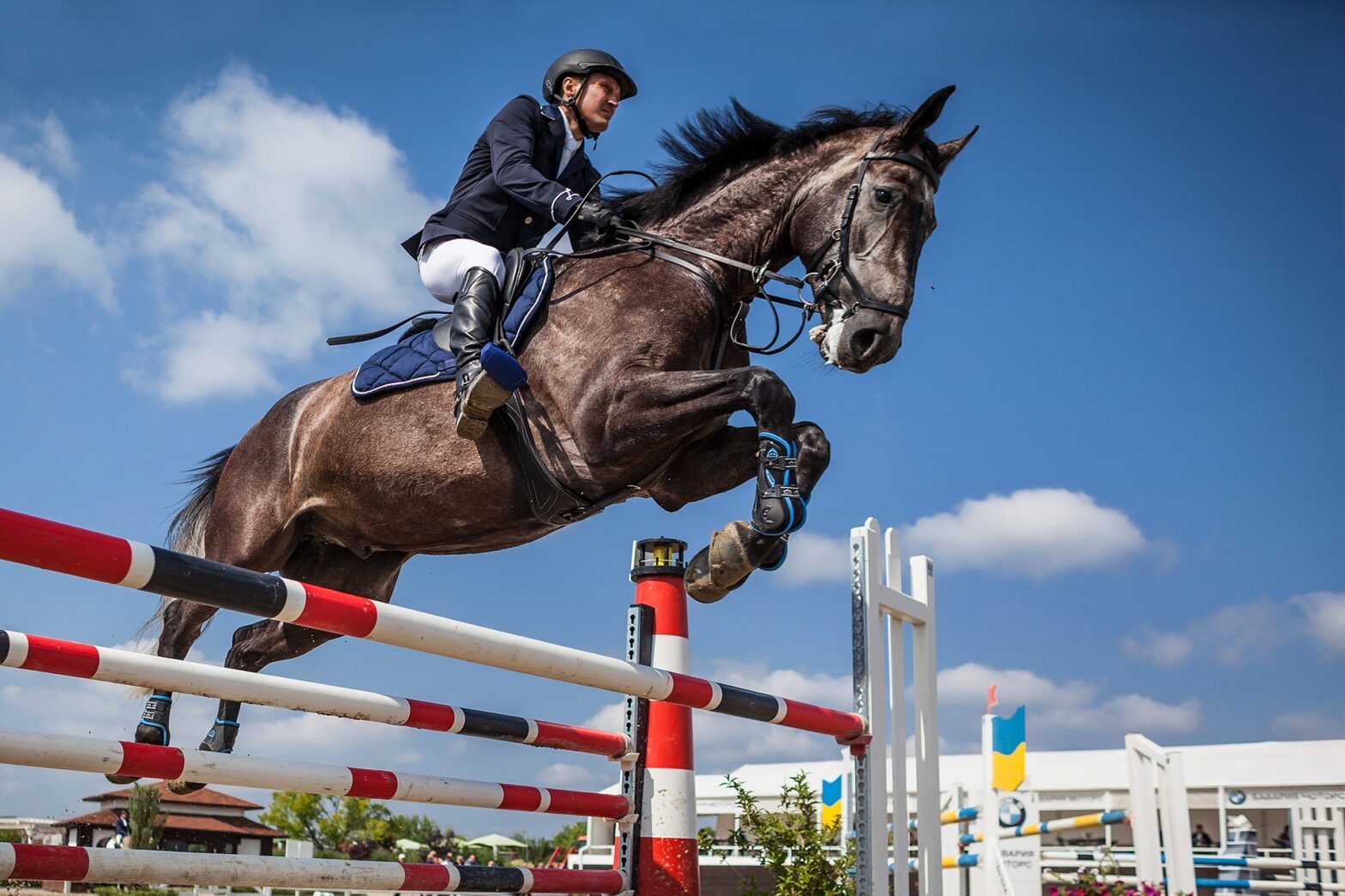 best horse boots for rider