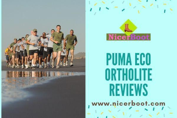 PUMA Men's Tazon 6 FM Running Shoe, Sleek Sports Shoes for You